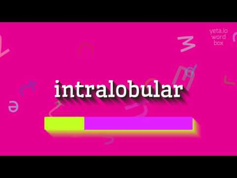 "How to say ""intralobular""! (High Quality Voices)"