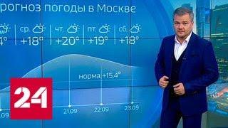 """""""Погода 24"""": природа готовит сюрпризы - Россия 24"""