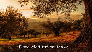 Morning Flute Music | Himalayan Flute Music | Flute Meditation Music (बाँसुरी) | Aparmita Ep.18