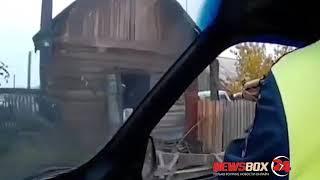 В Иркутской области автоинспекторы застрелили медведя, который забрался в автомобильный гараж