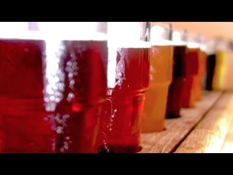 Wolverine State Brewing and the A2 Beer Wench - HHG #207