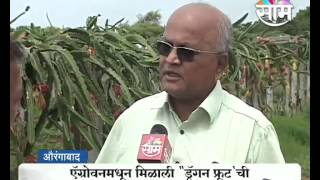 Ramesh Pokarna's 'Dragon fruit' farming success story