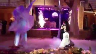 Ходулисты-бабочки и воздушные гимнастки на свадьбе - Каталог артистов