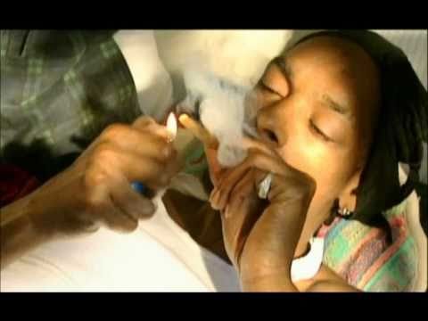 BO$$ PLAYA   GANGSTA MUSICAL! A day in the life of Bigg Snoop Dogg 1 - 2