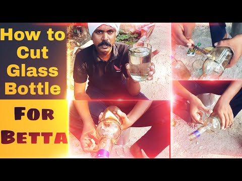 How To Cut Glass Bottle For Betta Fish.