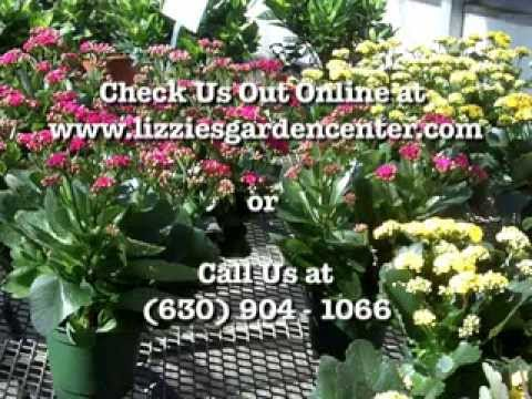 Garden Center Naperville Illinois - (630) 904-1066 - Greenhouse Naperville Illinois