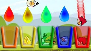 Angry Birds Drink Water 2 - ALL BIRDS COLLECTION TAKE COLOR WATER GAMEPLAY!