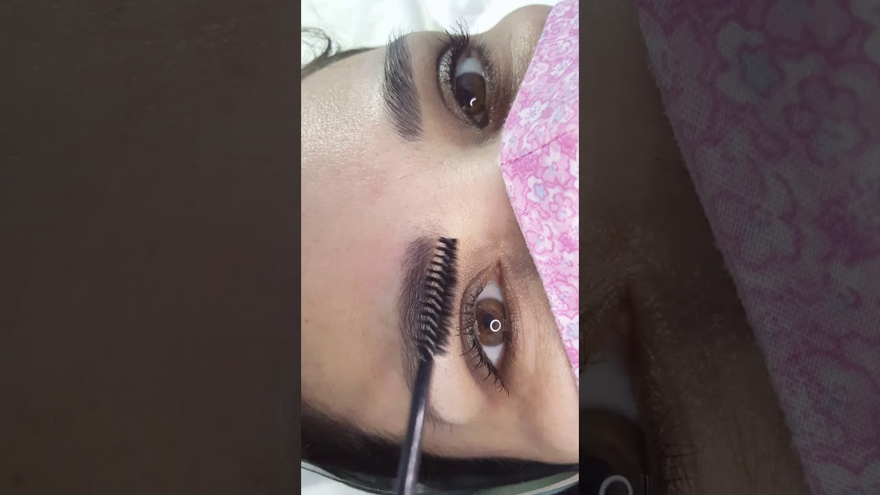 Healed Eyebrows Microblading 1 session by El Truchan @ Perfect Definition