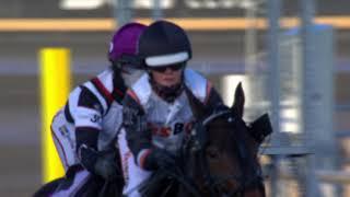 Vidéo de la course PMU PRIX BOKA TANDEMKORNING PA AXEVALLA - MONTÉLOPP