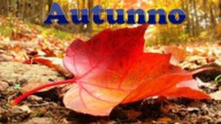 Antonio Vivaldi Le quattro stagioni: Autunno (4 season: Autumn) Photo Gallery HD