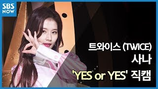 SBS  - 트와이스 '사나' YES or YES 직캠 / SBS 'INKIGAYO' TWICE 'SANA' FanCam