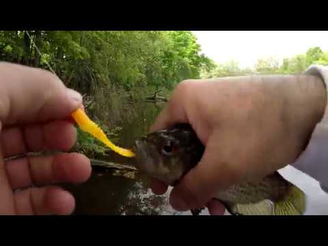 Fishing The Mill Pond - Doing Some Panfishing