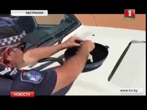 Жарят в машине Совершенно