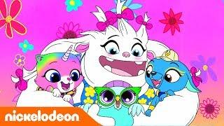 Радужно-бабочково-единорожная кошка | Пой вместе с Фелисити! | Nickelodeon Россия
