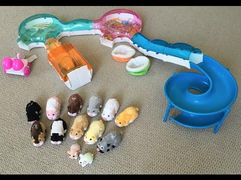Zhu Zhu Pets Collection  ToyZoneCollector