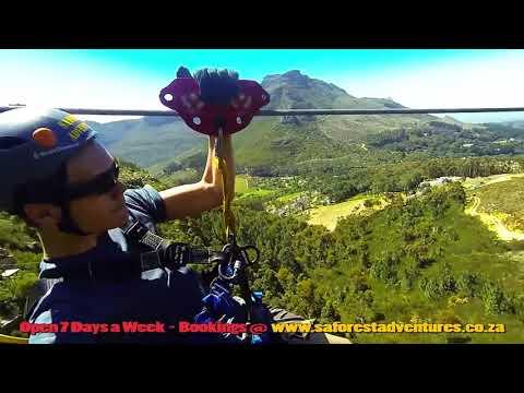 Cape Town Ziplines   Sa Forest Adventures