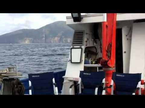 Challenger Marine Services