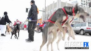 2011 Fur Rondy Sled Dog Race - A few clips