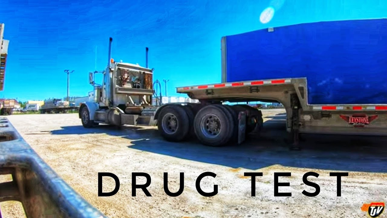 CDL DRUG TESTING   My Trucking Life   #2305   June 17, 2021