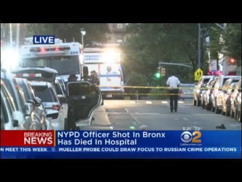 NYPD Officer Dies In 'Unprovoked' Bronx Attack