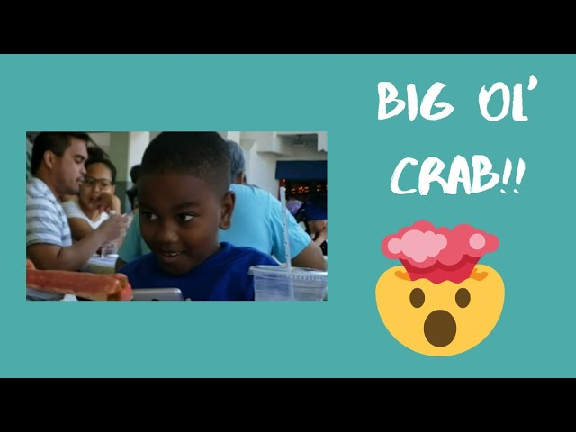 What's the biggest crab you've seen?