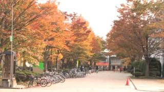 AU Promotion For International Students Come Explore Yourself at Akita University MP3