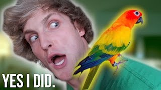 YOU WON'T BELIEVE WHAT I DID TO MY BIRD...