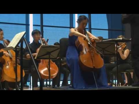 Antonín Dvořák ---  Cello Concerto in B minor, Op. 104, B. 191, Allegro