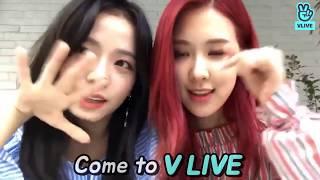 V Live Star Live App Wiki - Woxy