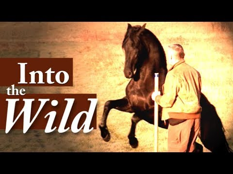 Hempfling - Into The Wild; Horse And Man