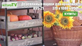 Стеллаж с деревянными ящиками для хранения овощей на даче(Посмотреть все модели деревянных ящиков для хранения овощей и фруктов: http://hitsad.ru/categories/iaschiki-dlia-khraneniia Стелла..., 2016-11-24T08:31:23.000Z)