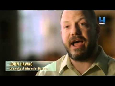 Youtube filmek - A neandervölgyiek apokalipszise - 1. rész