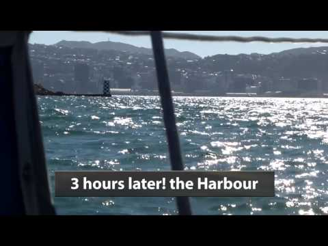 Taranto Sails Again Part 5 - Cook Strait