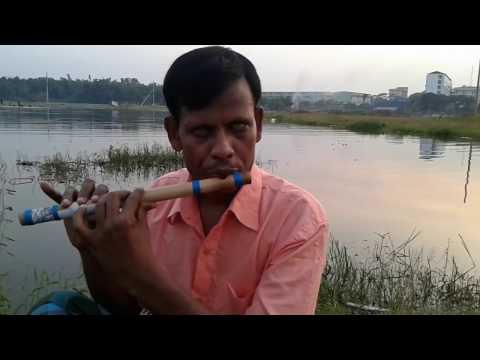 Amar Sonar Moyna Pakhi (Instrumental)