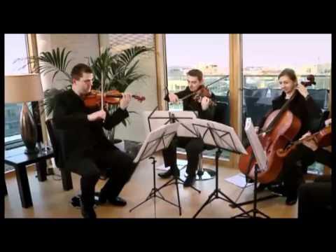 Bohemian Strings Quartet at Dublin
