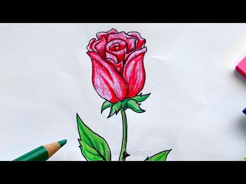 Malen lernen: Rose