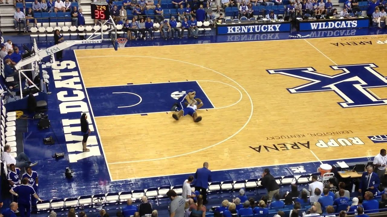 Uk Basketball: Kentucky Wildcats Mascot Fail During Halftime Of Blue