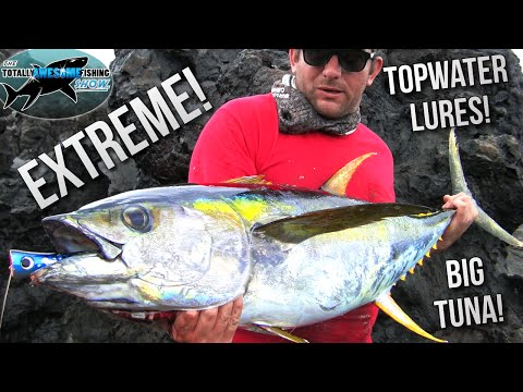 Extreme! Lure Fishing For Giant Tuna From The Shore | TAFishing