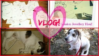 Vlog: Mikey London nakit haul i moj nestasni psic!
