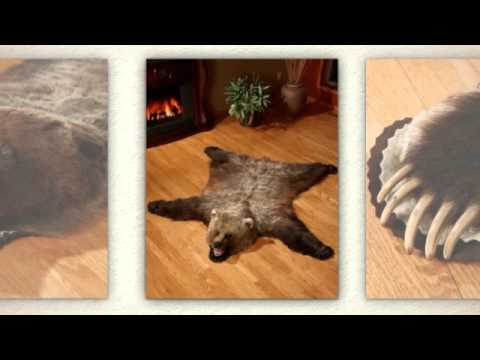 Bear Skin Rugs from Bear Skin World - YouTube