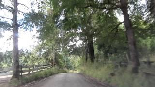 Camino a Termas de Panqui