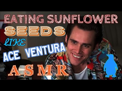 Sounds of Eating Sunflower Seeds - Loud Version - Male Voice - Breathing & Mouth Sounds - ASMR