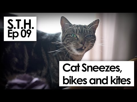 S.T.H. ep09 Wonder woman, kites, bikes and cat sneezes.
