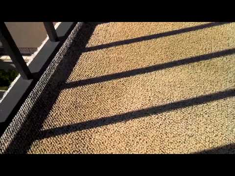 Mildew on Outside Carpet - YouTube