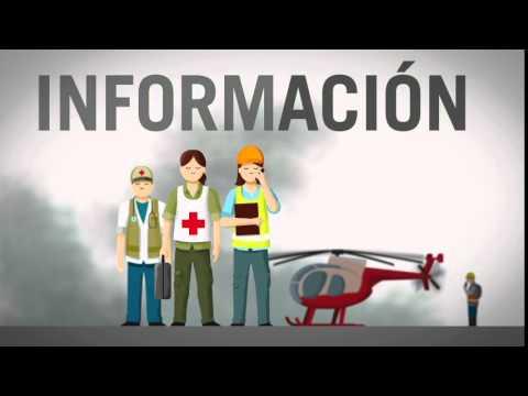 """Video Infografía """"Guía: Rol De Los Centros De Información En La Respuesta A Emergencias Y Desastres"""""""