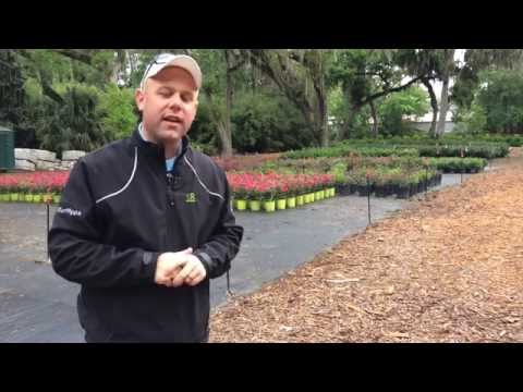 Course Clippings: Landscaping