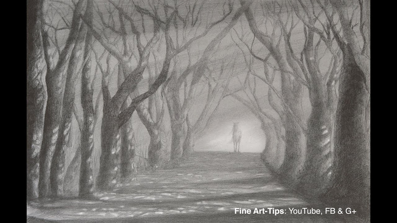 How To Draw A Road With Trees Light And Shadow Path With Pencil