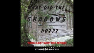 What did The Shadows Do?