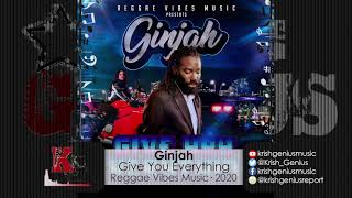 Ginjah - Give You Everything (Official Audio 2020)