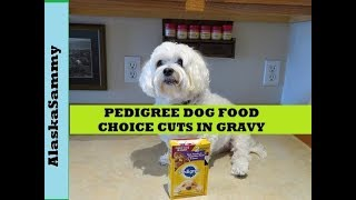 Pedigree Pouches Choice Cuts in Gravy Beef Noodles Vegetables Wet Dog Food